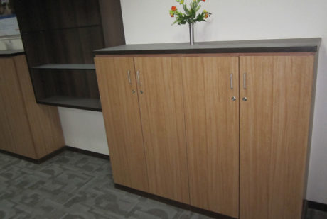 Themo Fisher office design 6
